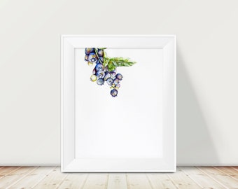 Blueberry Watercolor Painting Print