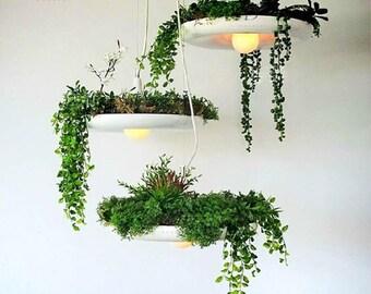 Lighting hanging,pendant lighting,hanging lamp,pendant lamp--PL032
