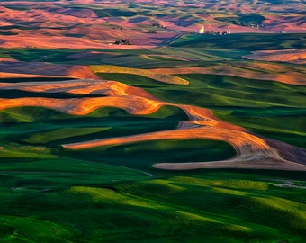 Palouse Farmland