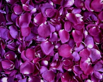 24 Cups Majenta Freeze Dried Rose Petals for Weddings- Real Rose Petals, Rose Petal Runners