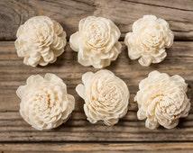 Sola flowers-Sola -Flowers SALE - dried flowers -Sola flowers Set of...12 ,24 ,30