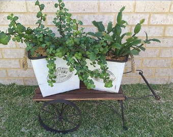 Pots with plants and cart combo