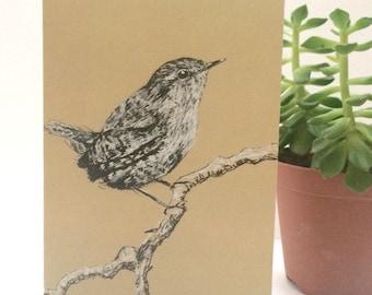 Bird Greeting Cards, Wren Ink Drawing Blank Cards
