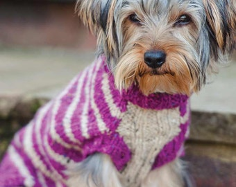 Toy Dog Jumper