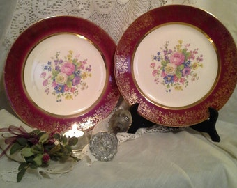 Two Beautiful Vintage Salem China Company Dinner Plate/Vintage China/Gold Encrusted