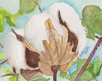 Greeting cards, Thank You cards, blank cards, stationery, original watercolor, cotton bolls, note cards, cotton boll, watercolor painting