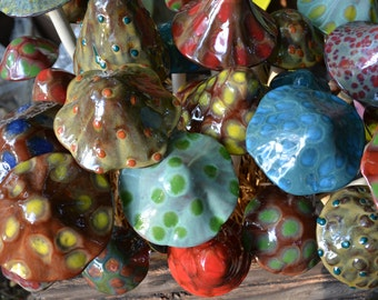 Mushroom Variety Packs-THE NATURAL TONES