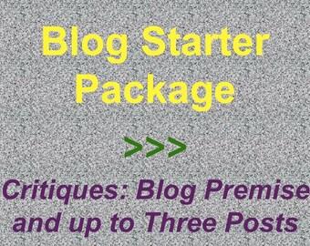New Blog Critique, Blog Starter Package, Blog Premise Critique, Three Blog Post Critiques