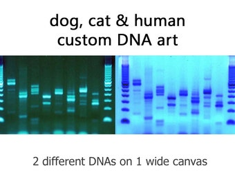 Custom dna art for dogs cats people by daredna on etsy for Personalized dna art