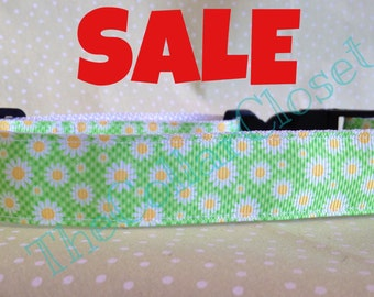 Green Daisy Dog Collar SALE