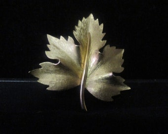 Bouchet leaf pin