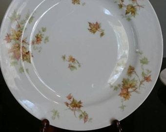 Antique Haviland Limoges Dinner Plate Maple Leaf Pattern / Fine China/ Bone China/ Leaf Pattern/ White China