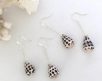 Small Hebrew Cone Shell Dangle Earrings