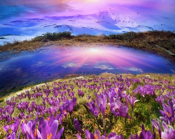 Purple Sky Canvas Prints