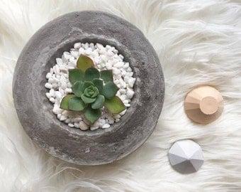 Raw grey concrete pot, Concrete pot, planter, succulent pot, cactus pot, concrete decor, concrete planter bowl, industrial, cement pot, raw