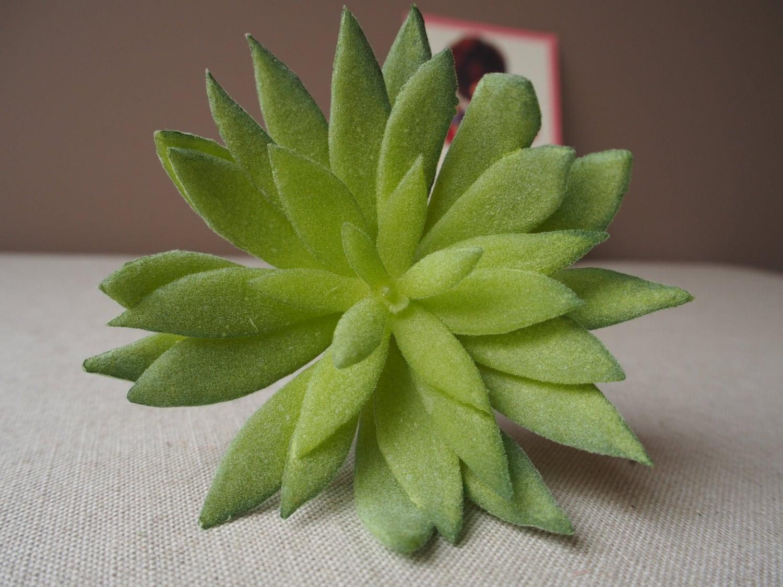 Artificial succulent fat plant interior decoration for Artificial plants for interior decoration