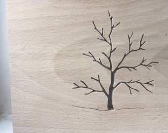 Wooden Beech Tree Silhouette