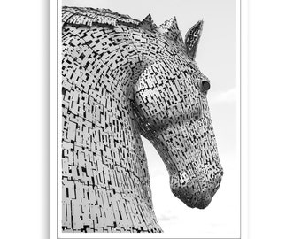 Kelpie Print,Horse Print,Horse Photography,Black and White,Printable Wall Art,Decor art, Horse,Art,Photography Print,Animal Art,Horse Decor