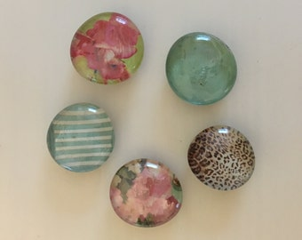 5-piece Magnet Set - Glass Cabochon Refrigerator or Office Magnets