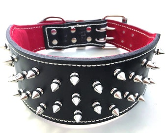 Black Leather & Red Sueded Studded Dog Collar with Nickel Fittings