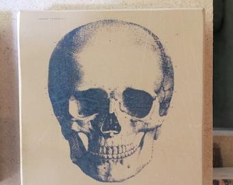 Minilito with skull