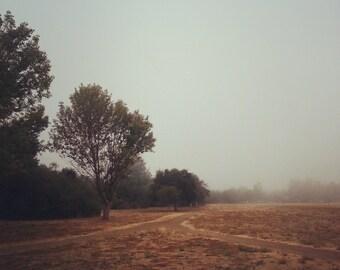 "Insta-Print 17: Foggy Morning 5""x5"""