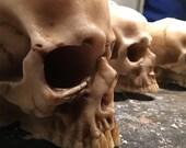 Anatomical Skull candle