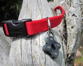 Dog collar tag, dog collar biker, trail dog, dog lover, biker dog