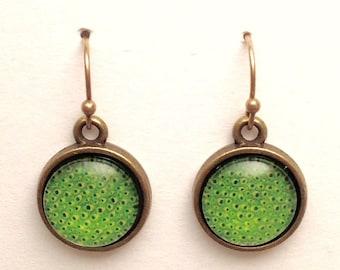Green glass earrings in antique brass settings.