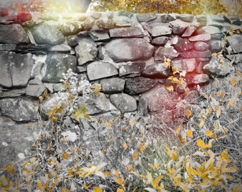 Canvas stone wall in the woods