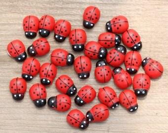 Ladybug figurine terrarium miniature