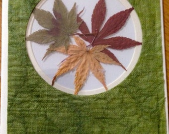 Real Pressed Japanese Maple Leaves Window Card with Handmade Paper