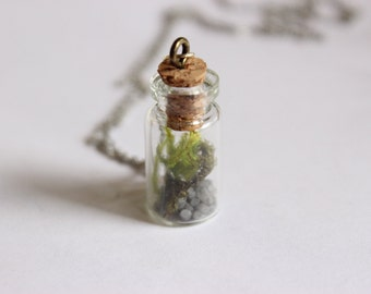 Tiny Terrarium In a Bottle Necklace + Choose Gold, Silver or Leather Chain