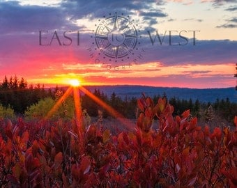 Dolly Sods at Sunset, landscape, landscape photography, West Virginia, nature, nature photography, sunset, digital photography, wilderness