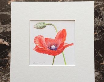 Red Poppy Original Acrylic Painting, poppy art, poppy painting, gift for her, gift for mom, red flower art, flower home decor, red flowers