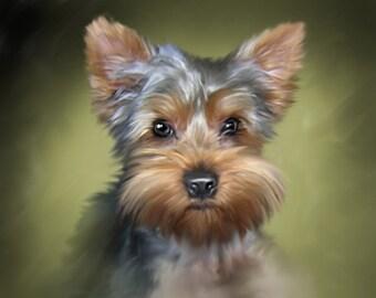 Custom Colorful Animal, Dog Portrait for Birthday, Gift, Art, Digital art, Drawing, Illustration, Decoration, Decor