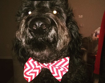 Dog Bow tie