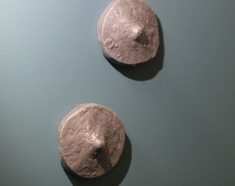 fridge maganet nipples (aluminum)