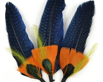 Natural feather 3/Pkg blu di Siena NM-MD38713