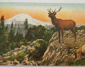Vintage The Two Sentinels Mt Tacoma Washington Postcard