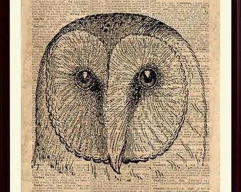 Owl Print, Owl Kids Decor, Owl Gifts, Owl Nursery Art, Owl Wall Decor, Owl Poster, Kids Playroom, Educational Posters, Animal Wall Art