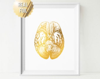 Anatomical Brain - Human Anatomy Print - Real Gold Foil Art - Anatomy Poster - Human Brain - Medical Poster - Gold Brain - Gift for Doctor