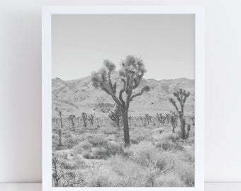 Cactus Print, Black and White Prints, Desert Art, Cactus Photography, Botanical Poster, Desert Photography, Desert Landscape, Nature Photo.
