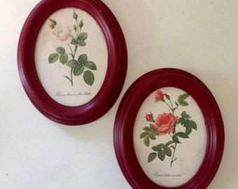 Vintage botanical rose wall decor