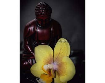 Buddha and Orchid -Fine Art Photographic Print  - 8x12,12x18, 16x24, or 20x30