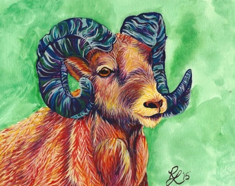 Big Horn Sheep Stationary/Blank Card