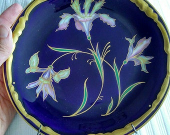 Echt Haviland Kobalt plates