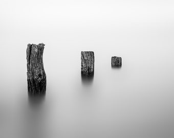 Three Posts - Original Print (Mounted and Backed)