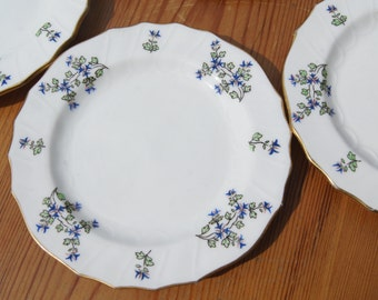 A Set of Six Cauldon Ltd Hand-Painted Side Plates