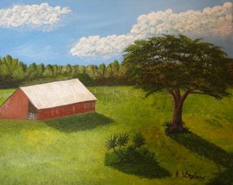 Florida Barn; Oils, Stretched Canvas, 16X20